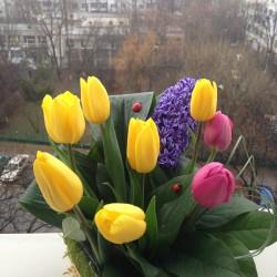 Aranjament floral cadou in cosulet cu lalele si zambile