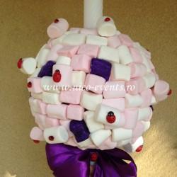 Lumanari botez cu marshmallows si buburuze LBN010